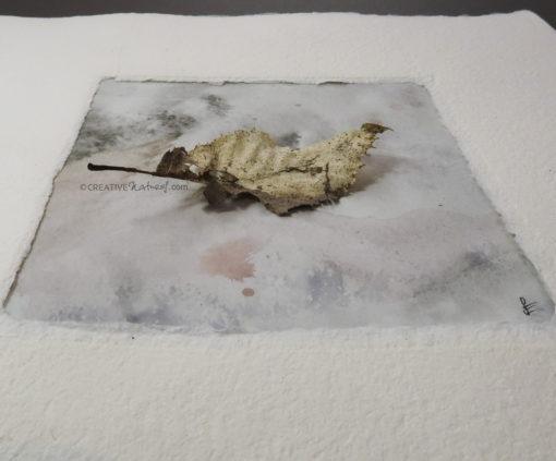 """""""Fragil"""", Ansicht 2, von Sandra Egert, Close-up-Serie, Naturobjekt auf Aquarell, L 10 x B 10 cm , H 3 cm, in Büttenpassepartout weiß, B 20 x L 20 cm, auf Passpartoutkarton dunkelgrau"""