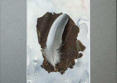 """Federliebe"", Draufsicht, von Sandra Egert, Close-up-Serie, Wandobjekt mit Aquarell, L 14,5 x B 9,5 cm , H 3 cm, in grau passepartouriert, B 18 x L 24 cm"