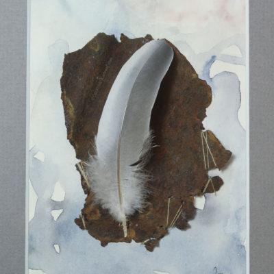 """Federliebe"", Draufsicht nah, von Sandra Egert, Close-up-Serie, Wandobjekt mit Aquarell, L 14,5 x B 9,5 cm , H 3 cm, in grau passepartouriert, B 18 x L 24 cm"