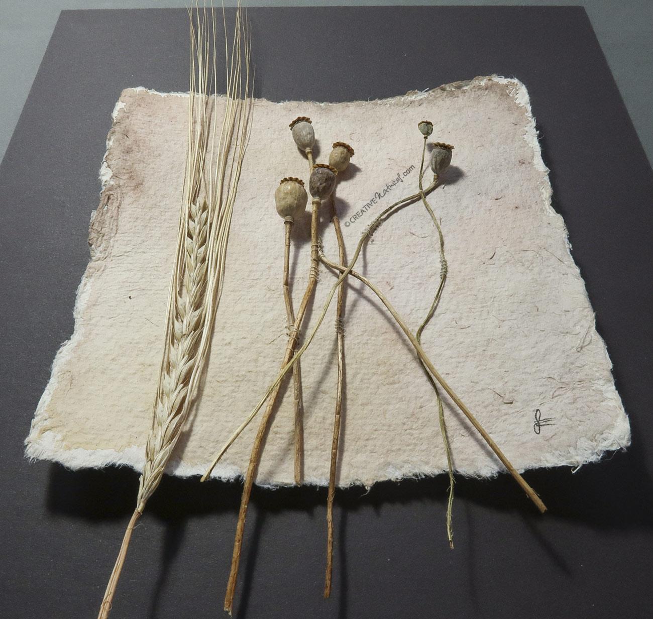 """""""Remembering Life"""", Ansicht von unten, von Sandra Egert, Close-up-Serie, Wandobjekt auf handgeschöpftem Papier, L 15 x B 15cm , H 3 cm, aufgezogen auf Passepartoutkarton W 24 x L 30 cm"""