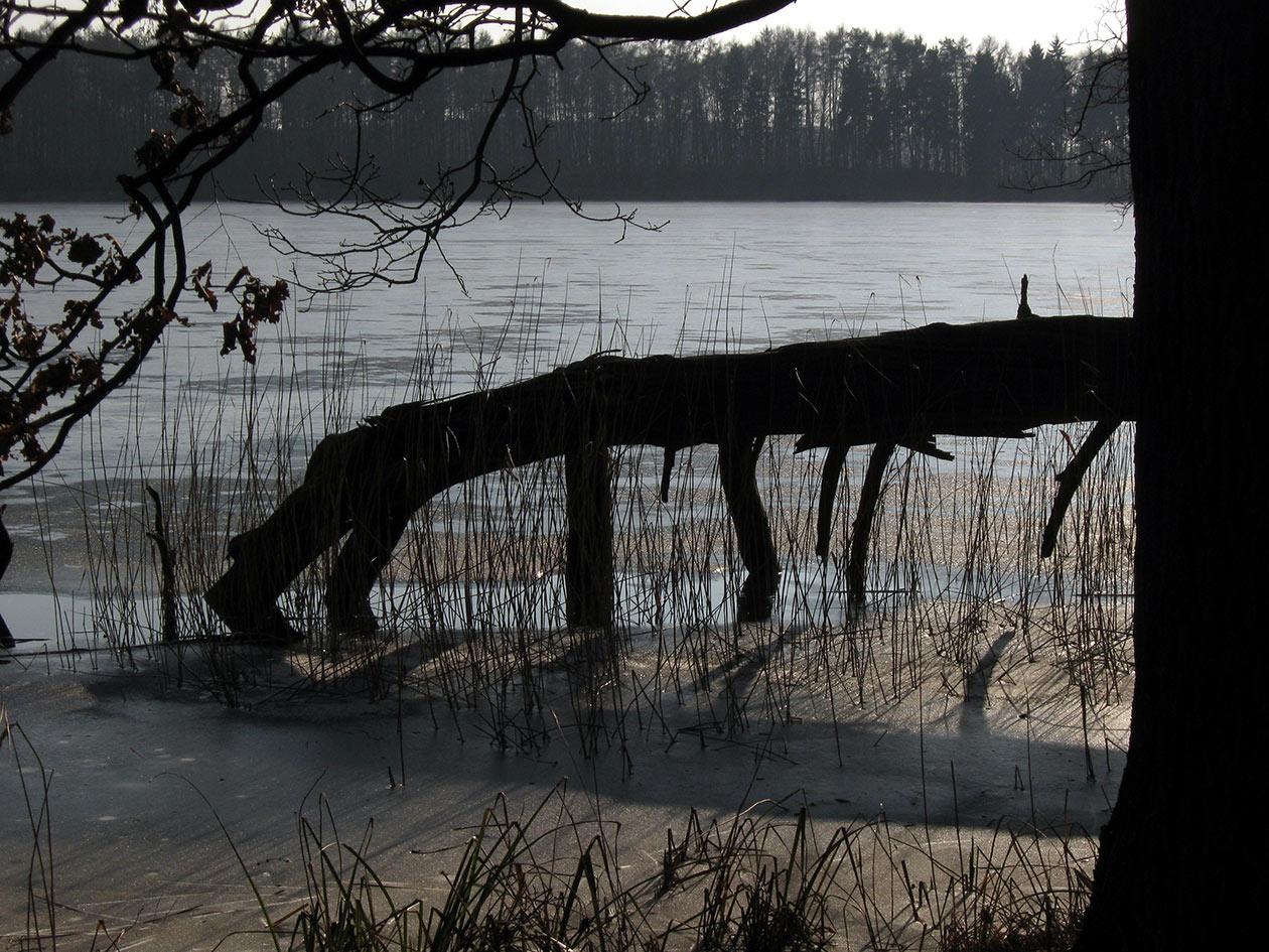 Schatten im Eis, Digitalfotografie als HD Metal Print in verschiedenen Grössen