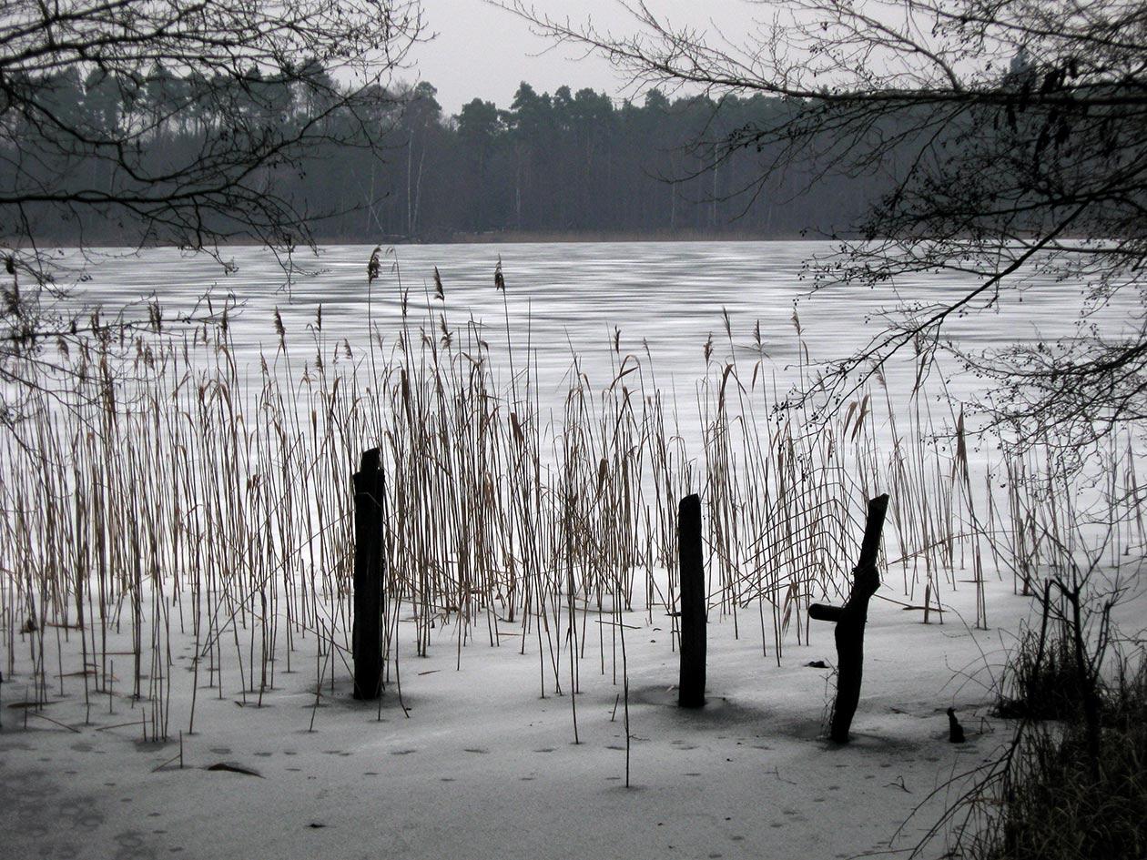 Winterstimmung am Dovinsee, Digitalfotografie als HD Metal Print in verschiedenen Grössen