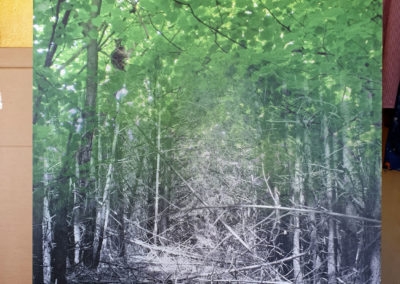 Waschbärblätterdach