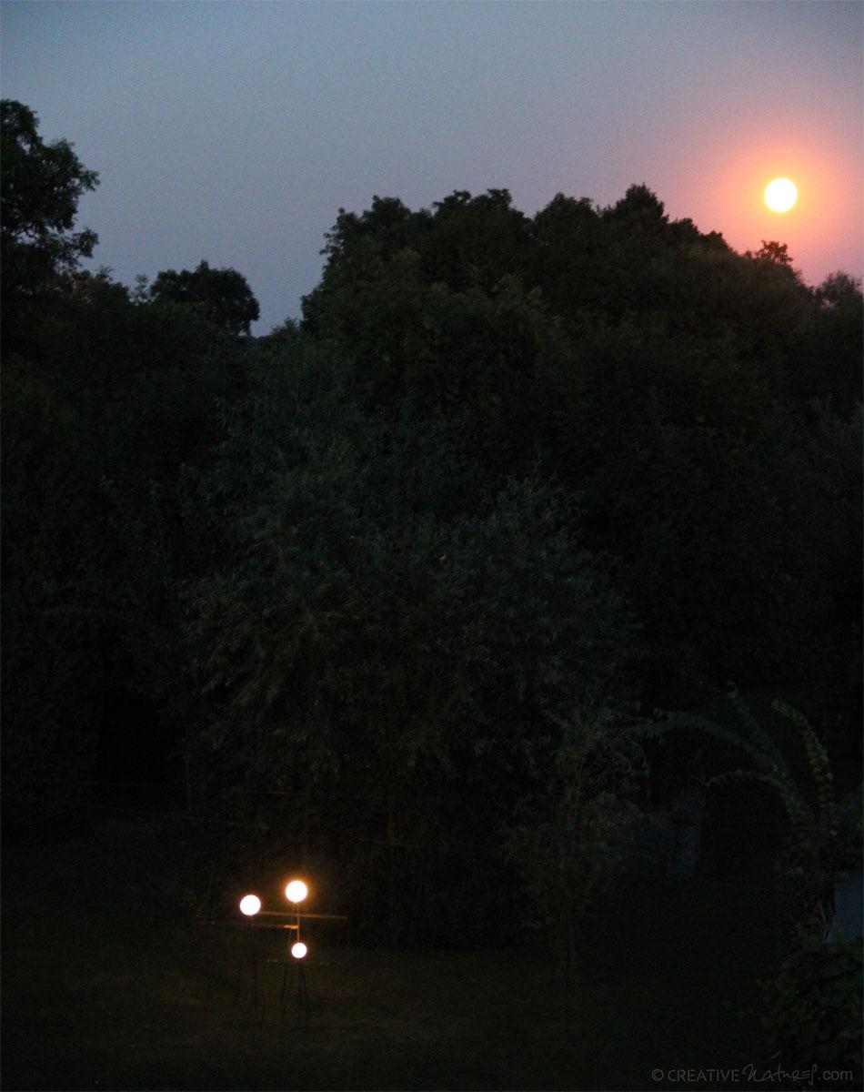 Lampenfamilie Bei Mondschein