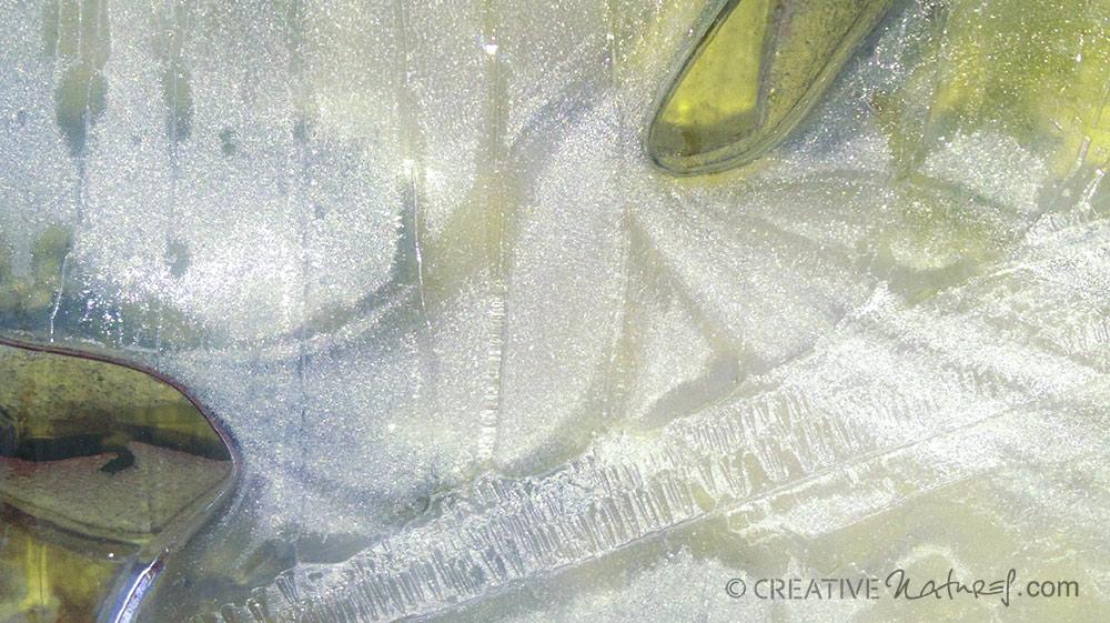 Phaenomen 1.5 Digitalfotografie als HD Metal Print in verschiedenen Grössen